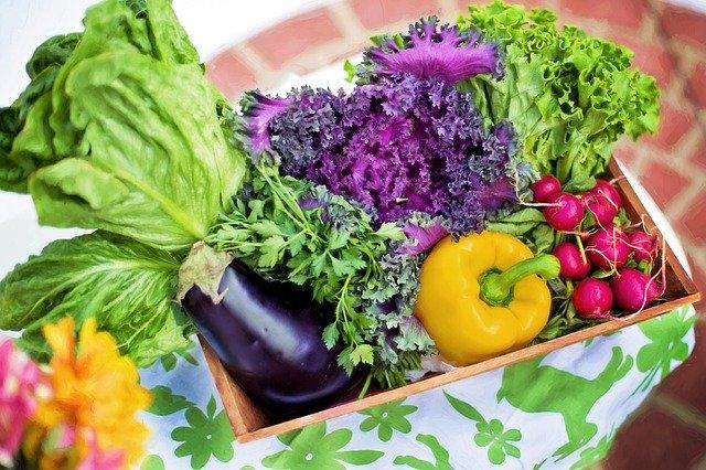 Organic Gardening Tips For Gardeners Of Any Level